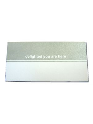 PL01 Silver Grey Fold over table place card